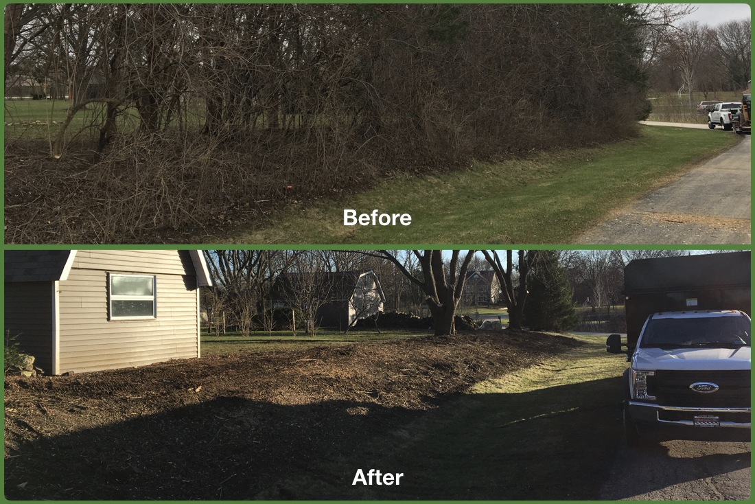 Before After Lot Clean Up